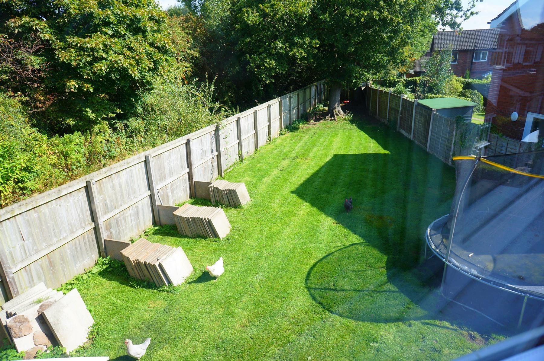 Rear garden from bedroom